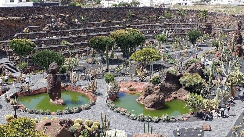 Cactus Garden von César Manrique