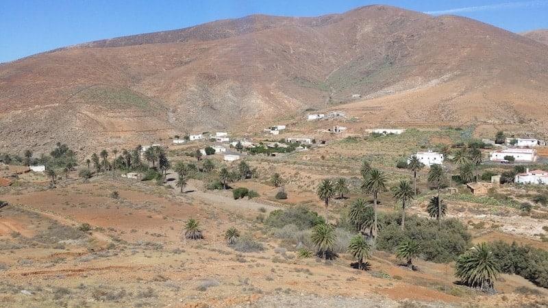 Palmenhain des Vega del Rio Palma