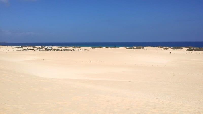 Beach of Corralejo in Fuerteventura